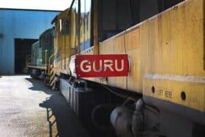 GURU® Flag and Clip